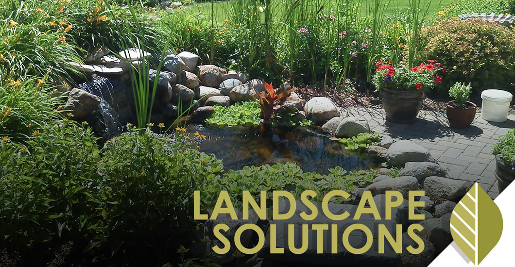 Landscape Solutions text overlaid on photo of backyard pond