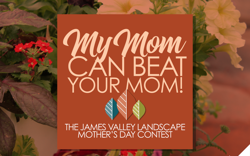 thumbnail image for blog post: Mother's Day Contest