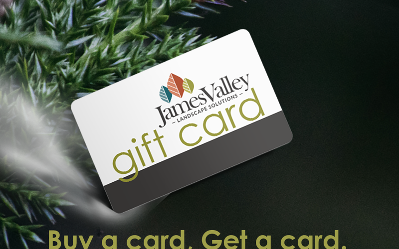 thumbnail image for blog post: Gift Card Specials Through December 20!