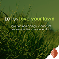 thumbnail image for blog post: Let us love your lawn