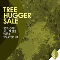 thumbnail image for blog post: Tree Hugger Sale