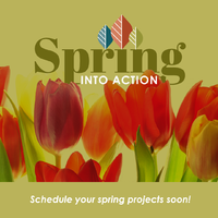 thumbnail image for blog post: Spring into Action!