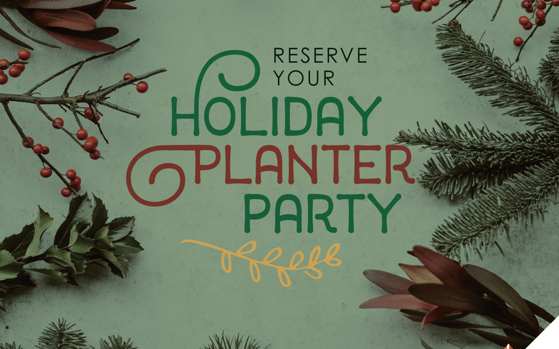 thumbnail image for blog post: Holiday Planter Parties