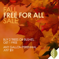 thumbnail image for blog post: Fall Free for all Sale