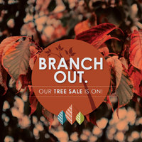 thumbnail image for blog post: Fall Tree Sale!